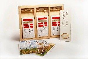 민펑 농장 (民豐)