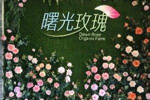 수광 유기농 장미 공원 (曙光玫瑰)