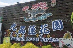 지우핀 연꽃 생태 교육 공원 (九品蓮花)